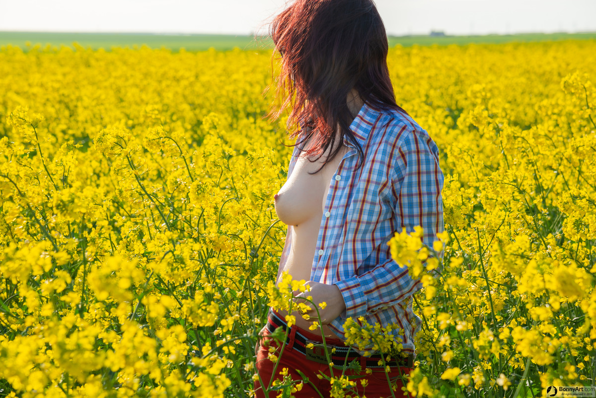 Her Breast Craves for Light in the Rapeseed Field
