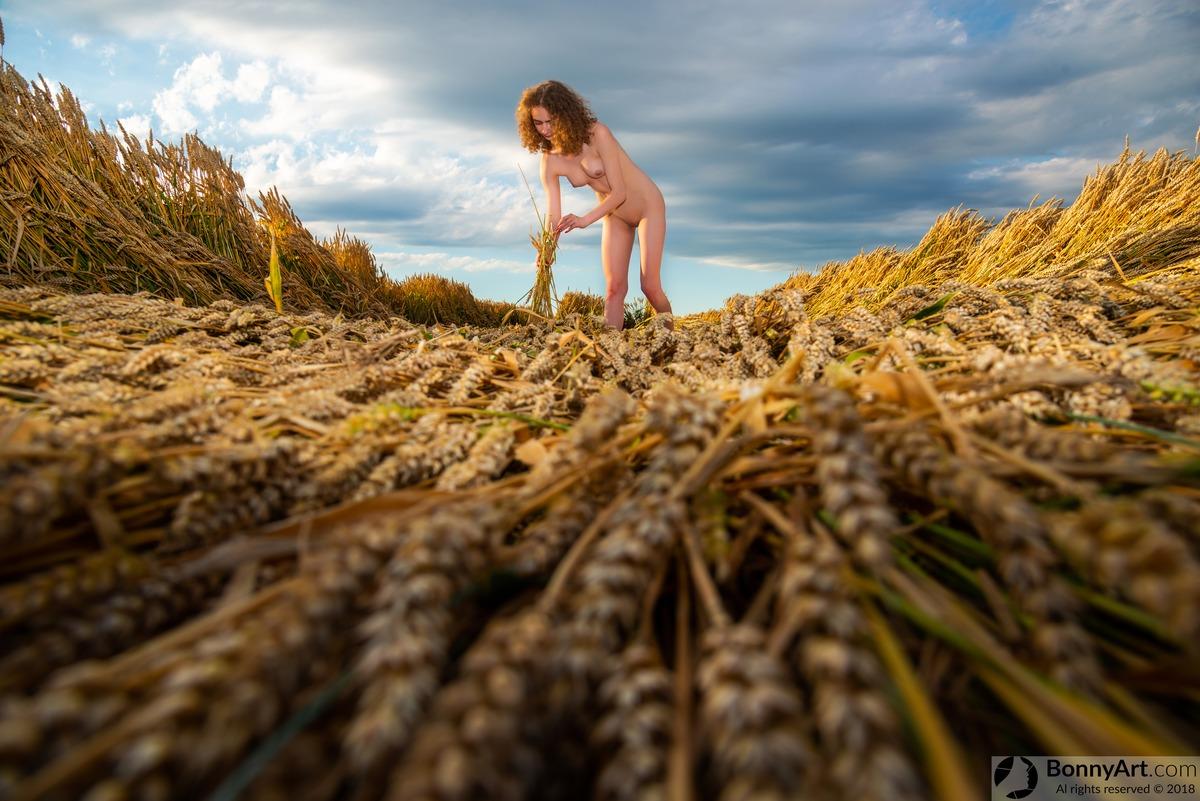 Nude Teen Girl Harvesting Wheat Crop