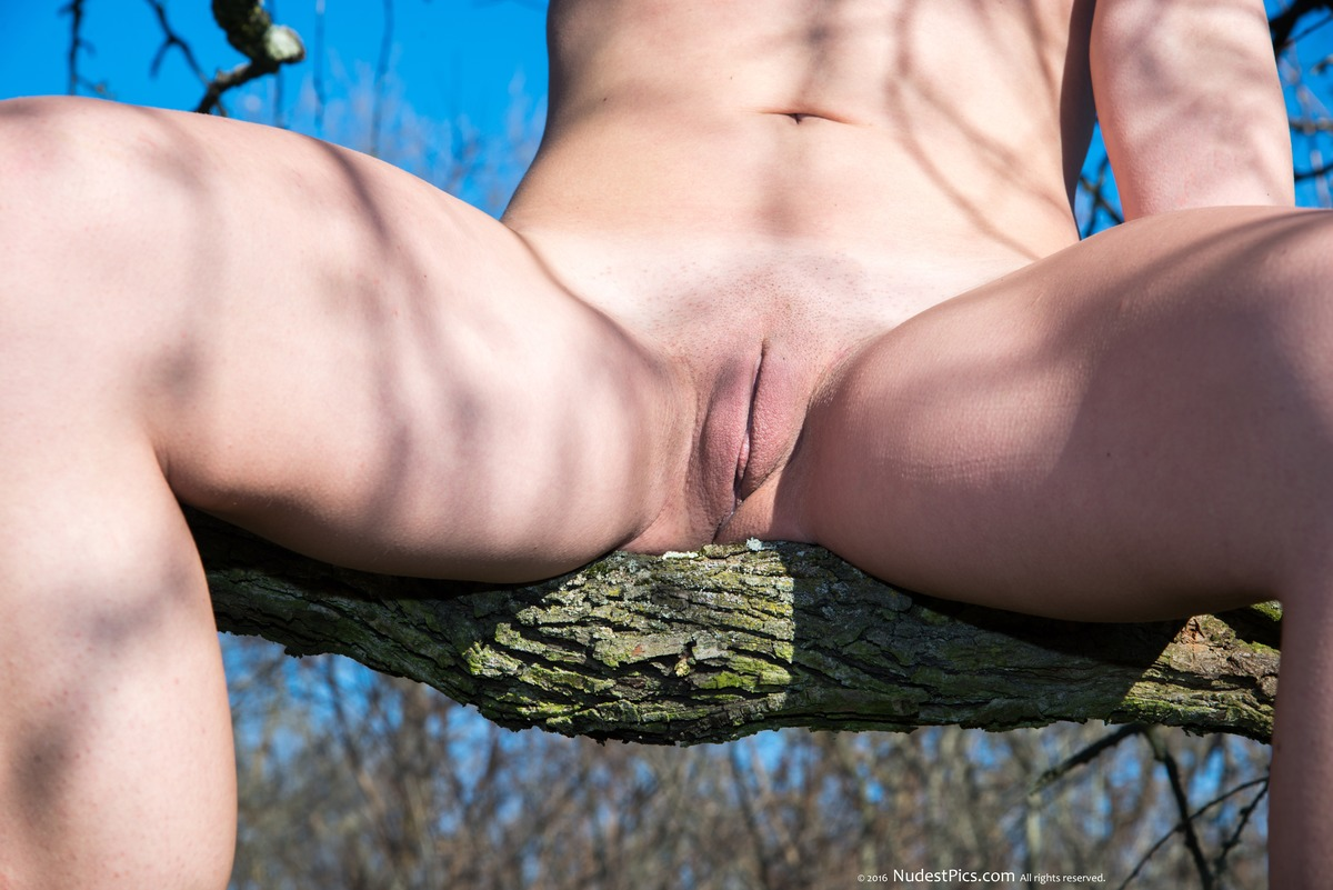 Shaved Pussy on a Tree